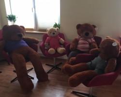 Bezpłatne zajęcia terapeutyczne Rodzina Miśków